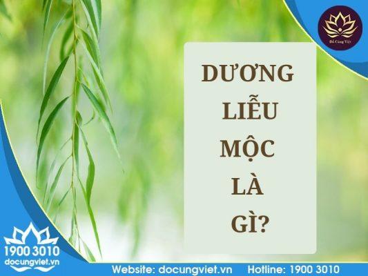 Dương Liễu Mộc là gì?