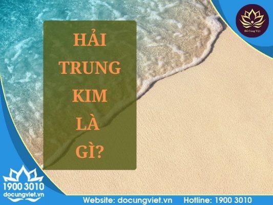 Hải Trung Kim là gì?